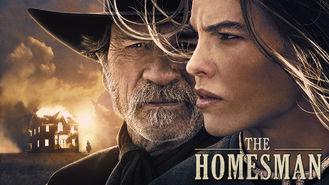 Netflix Box Art for Homesman, The