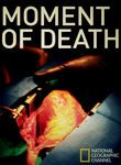 National Geographic: Moment of Death Poster