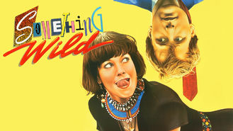 Netflix box art for Something Wild