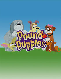 Pound Puppies: Season 2: Zipper the Zoomit Dog