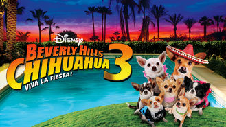 Netflix box art for Beverly Hills Chihuahua 3: Viva La Fiesta!