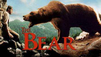Netflix box art for The Bear