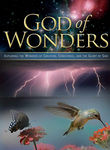God of Wonders Poster