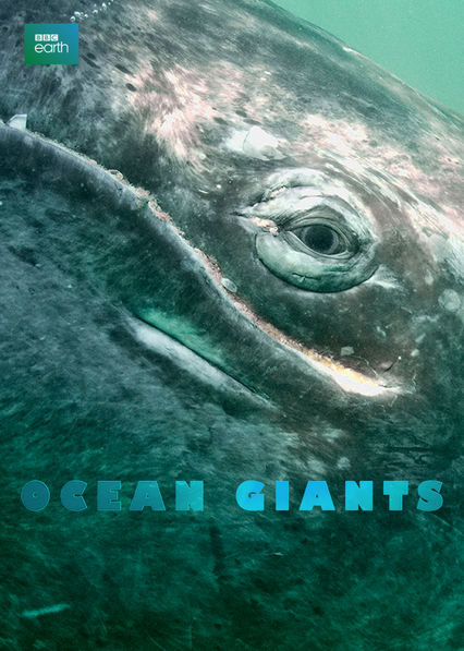 Ocean Giants Netflix KR (South Korea)