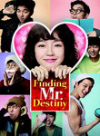 Finding Mr. Destiny Poster