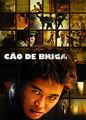 Cão de briga | filmes-netflix.blogspot.com