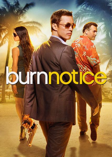 Burn Notice Netflix AR (Argentina)