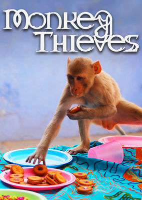 Monkey Thieves - Season 1