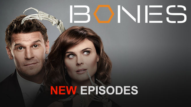 Netflix box art for Bones - Season 9