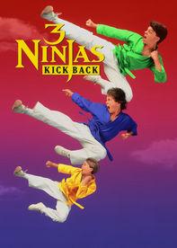 3 Ninjas: Kick Back Netflix BR (Brazil)