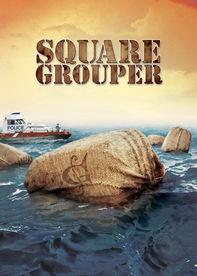 Square Grouper Netflix ES (España)