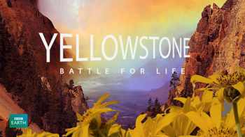 Netflix box art for Yellowstone: Battle for Life - Season 1