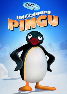 Pingu: Introducing Pingu