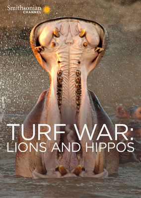 Turf War: Lions and Hippos