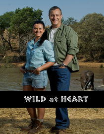 Wild at Heart: Series 7: Episode 3
