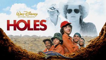 Netflix box art for Holes