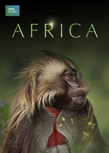 Africa Netflix AR (Argentina)