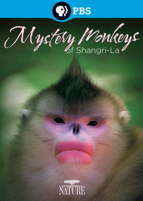 Nature: Mystery Monkeys of Shangri-La