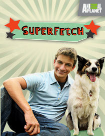 Superfetch: Season 1: Fetch Me Some Ice Cream / Dog Cleans Up Bachelor Pad