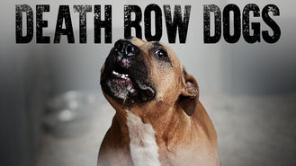 Netflix box art for Death Row Dogs
